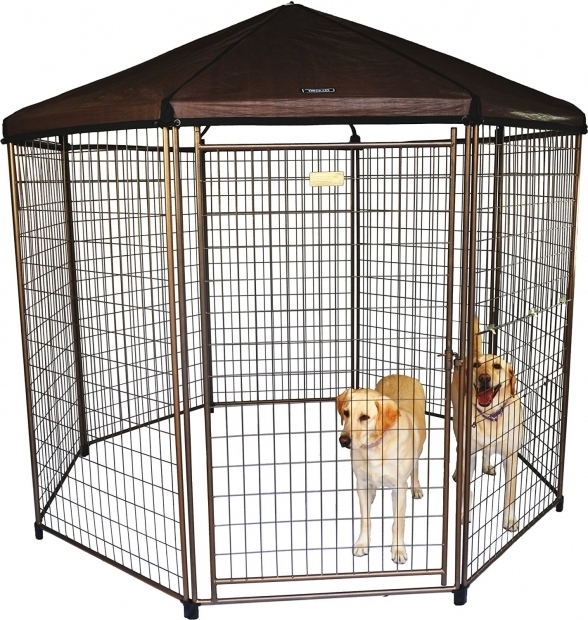 Picture of Advantek Pet Gazebo Review The Advantek Pet Gazebo Animal Hub
