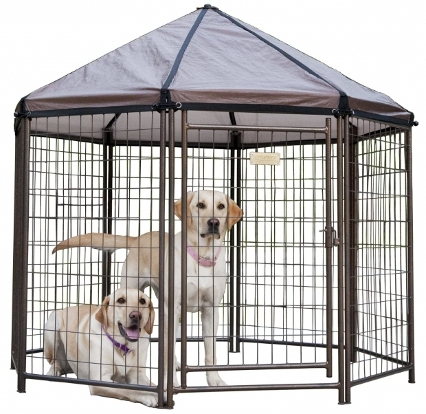 Amazing Advantek Pet Gazebo Modular Outdoor Dog Kennel Review The Advantek Pet Gazebo Animal Hub