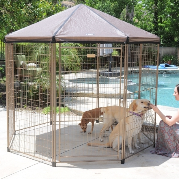 Beautiful Advantek Pet Gazebo Modular Outdoor Dog Kennel Advantek The Original Pet Gazebo Reviews Wayfair