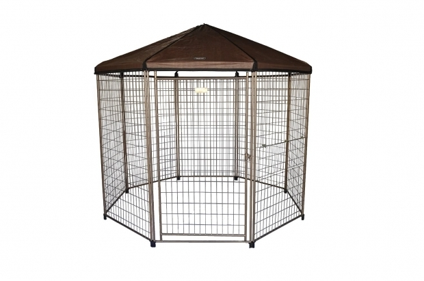 Fascinating Advantek Pet Gazebo Accessories Review The Advantek Pet Gazebo Animal Hub