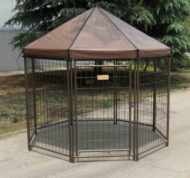 Remarkable Advantek Pet Gazebo Modular Outdoor Dog Kennel Advantek News And Notes The Pet Gazebo